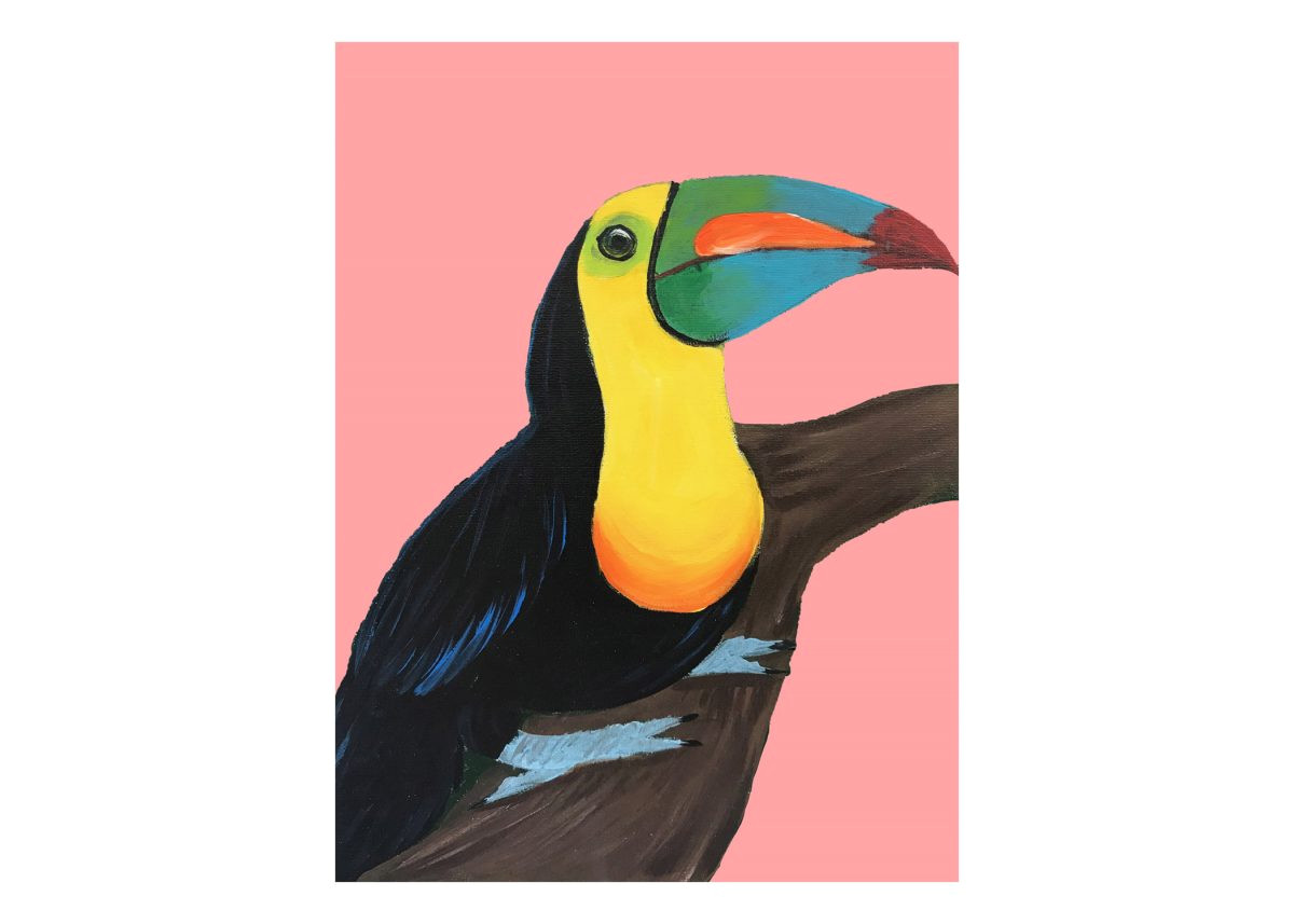 paint and sip new toucan at swig of color