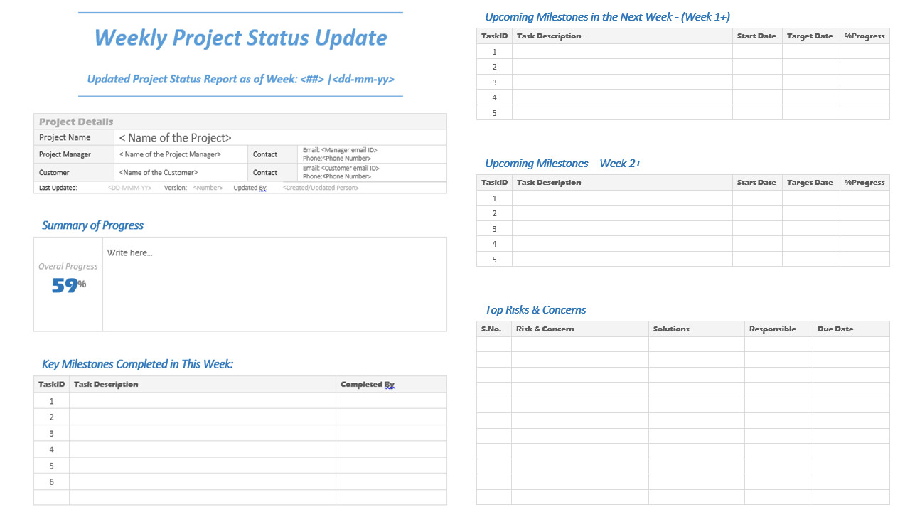 weekly project status update