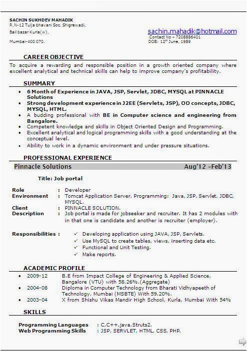 6 month experience resume for software