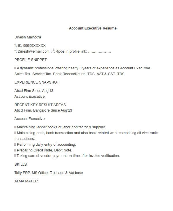 Account Executive Resume format Word 25 Free Executive Resume Templates Pdf Doc Free