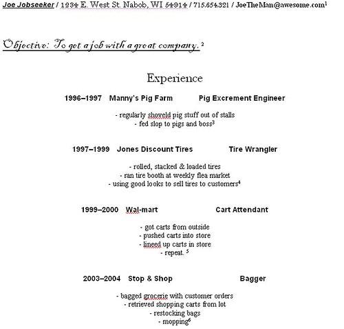 resume for models beginners