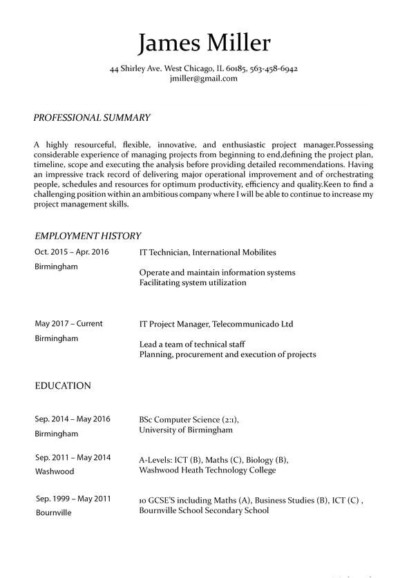 Building A Basic Resume Resume Maker Online Create A Perfect Resume In 5 Minutes