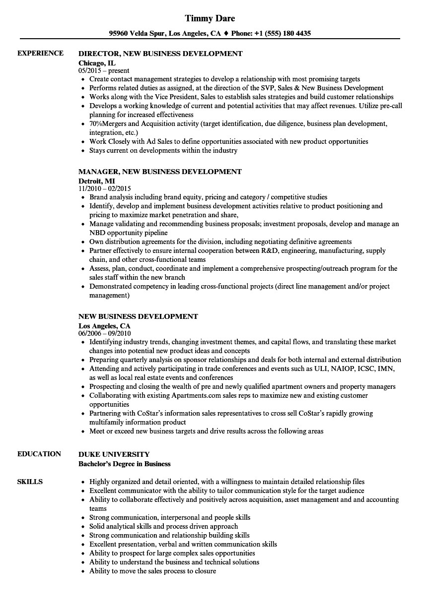 new business development resume sample