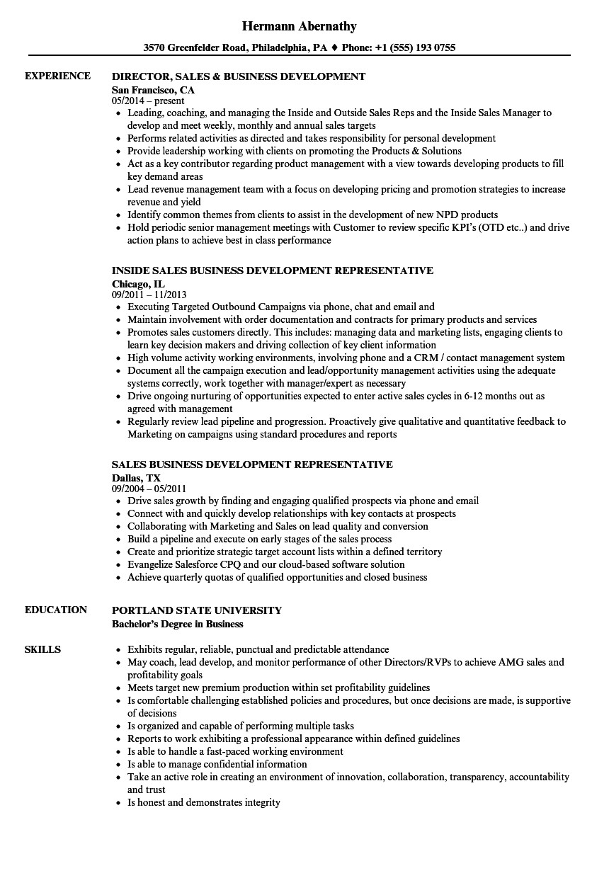 sales business development resume sample