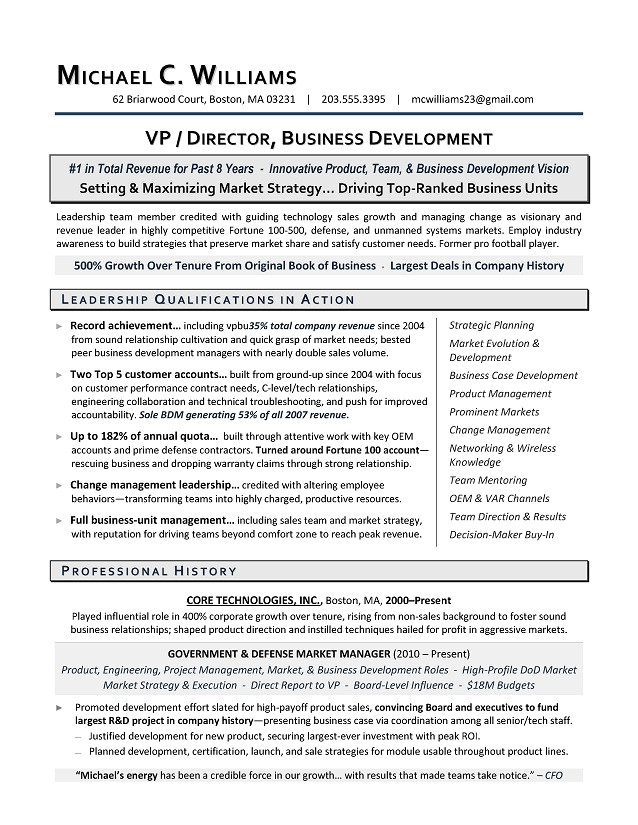 sample vp business development resume