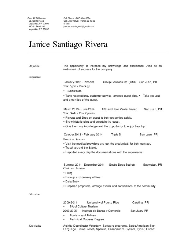 janice santiago profesional resume 46498007