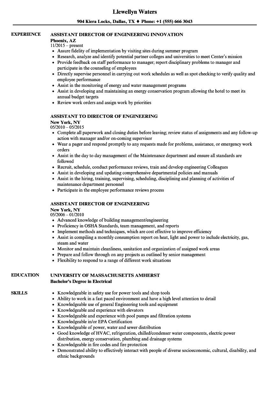 assistant director engineering resume sample
