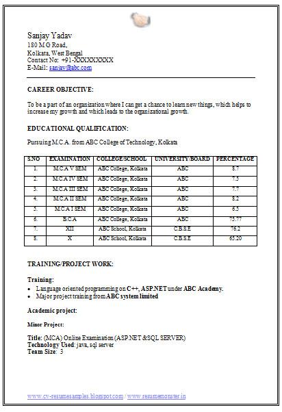 mca fresher resume format doc
