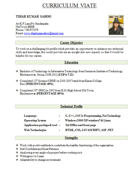 fresher resume format download in ms word