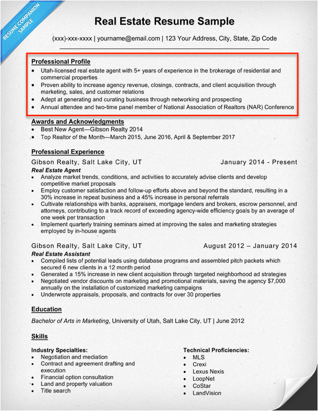 resume profile examples guide