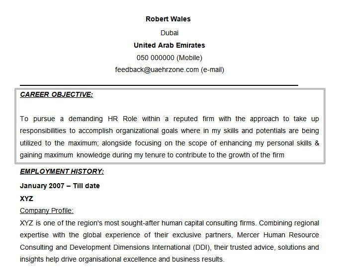 Hr Professional Resume Objective 61 Resume Objectives Pdf Doc Free Premium Templates