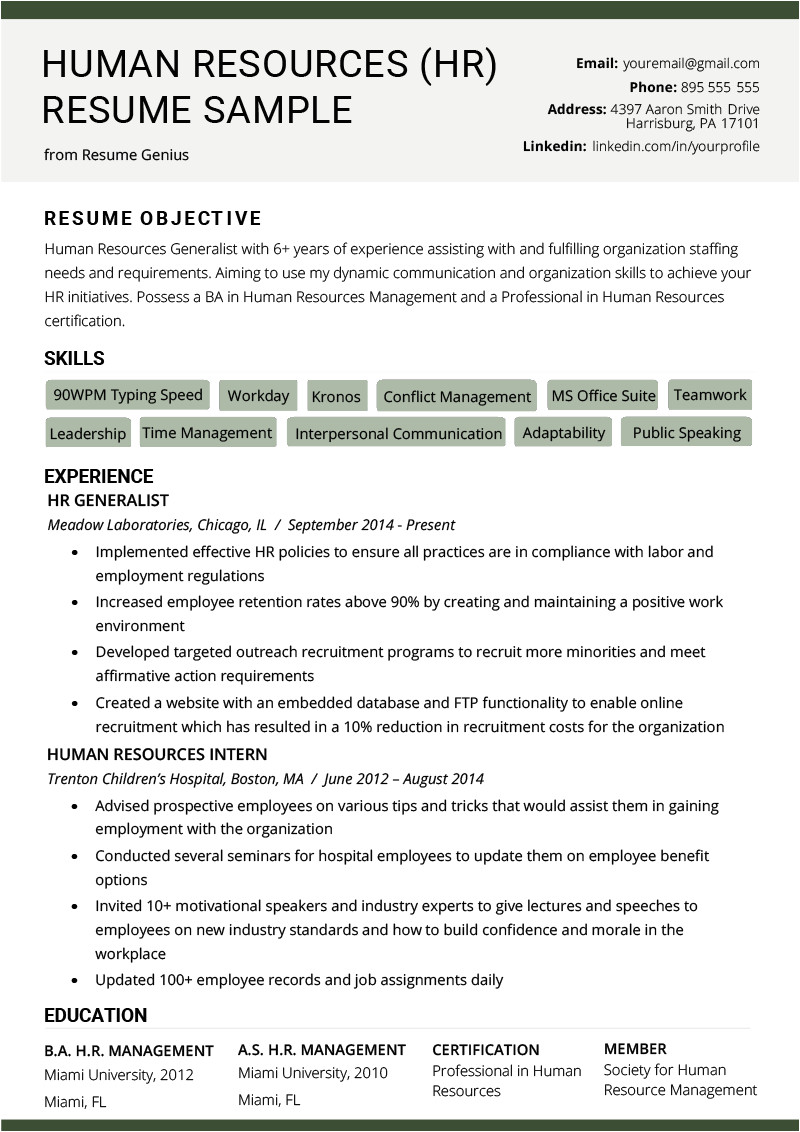 human resources hr resume example