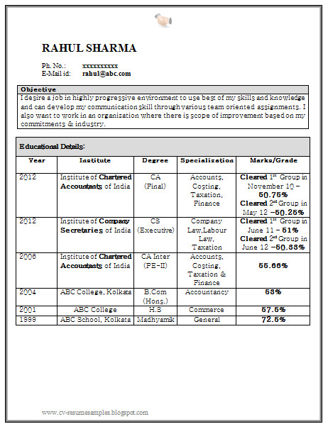 curriculum vitae samples resume for