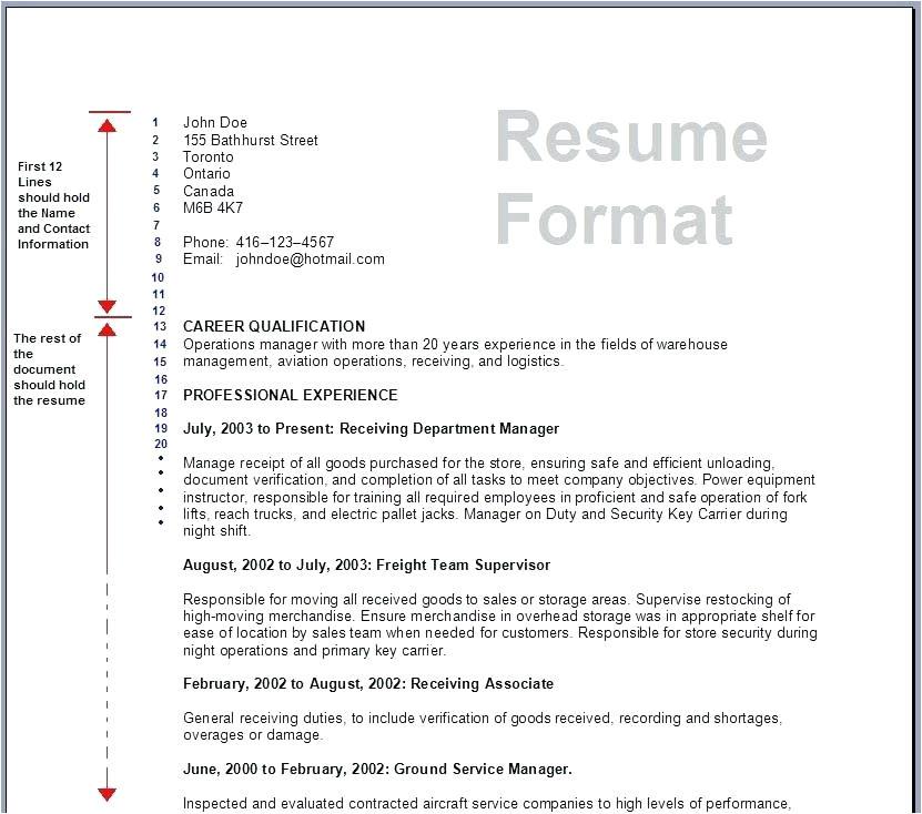 resume format for job application