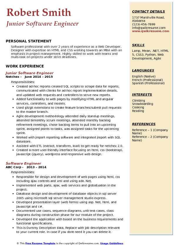 junior software engineer