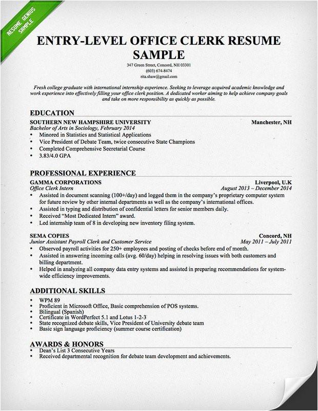 entry level office clerk resume example