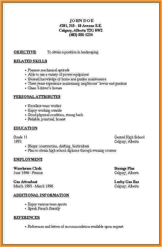 7 simple professional resume template
