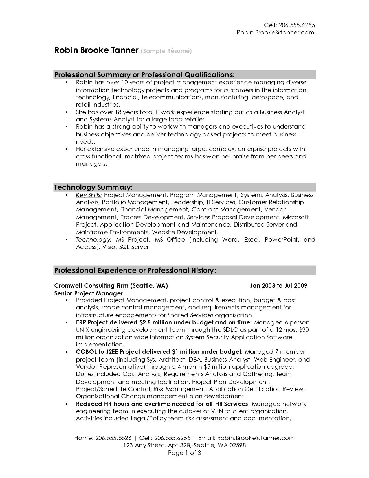 professional resume summary 2016