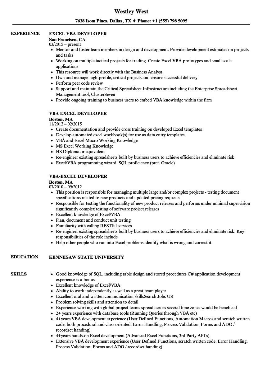 excel vba developer resume sample