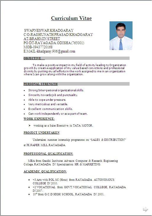 Sample Resume format Word File Best 25 Resume format In Word Ideas On Pinterest