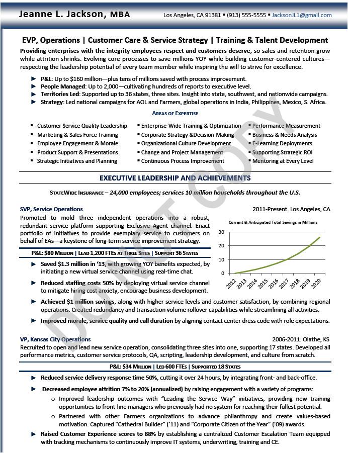 svp executive resume sample technology