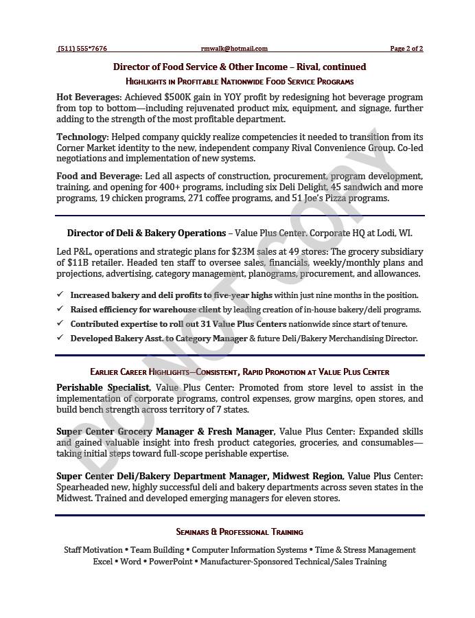 vp executive resume sample operations