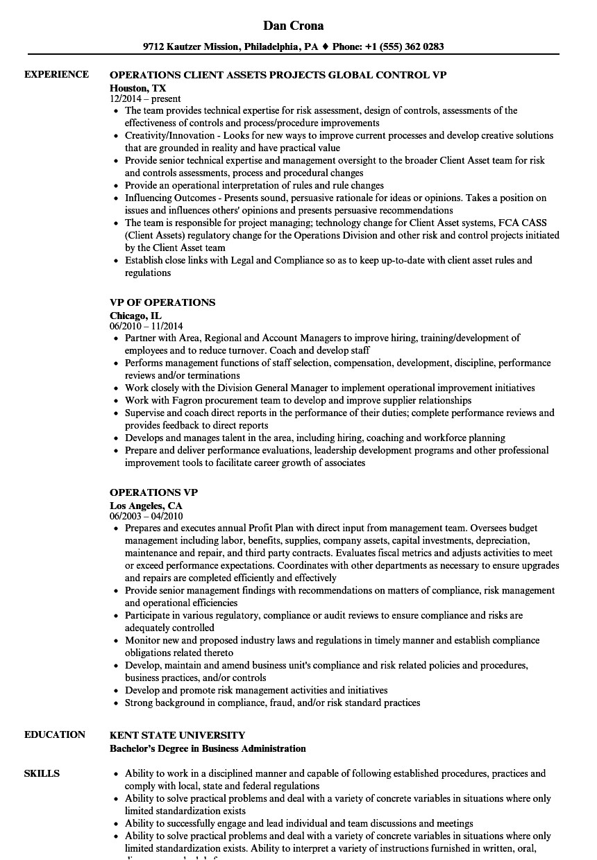 operations vp resume sample