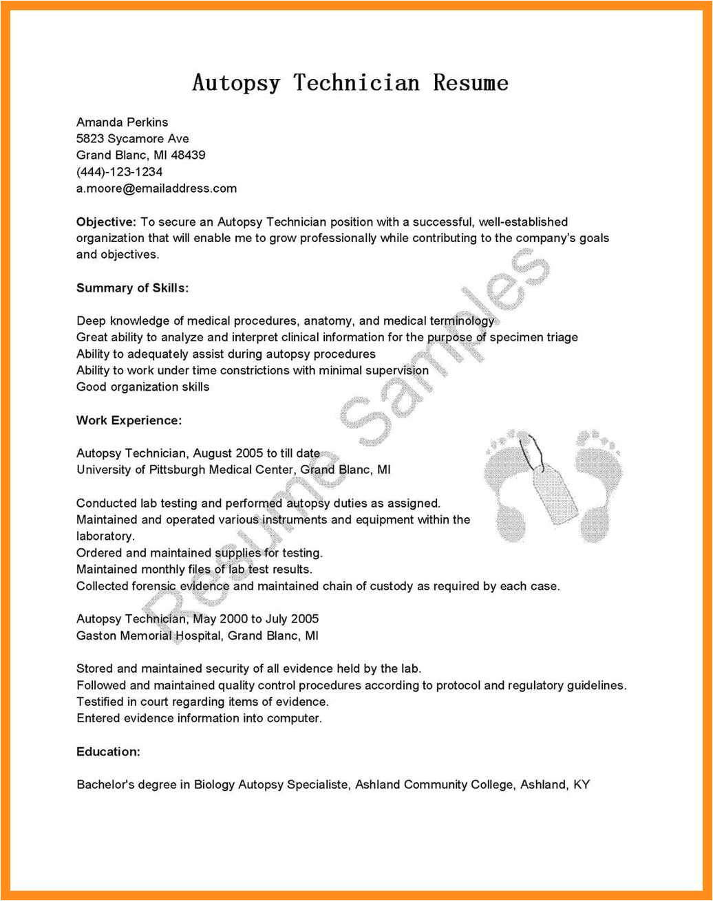 12 13 young professional resume template