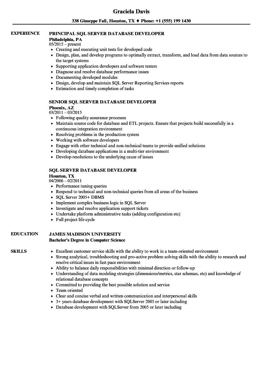 sql server database developer resume sample