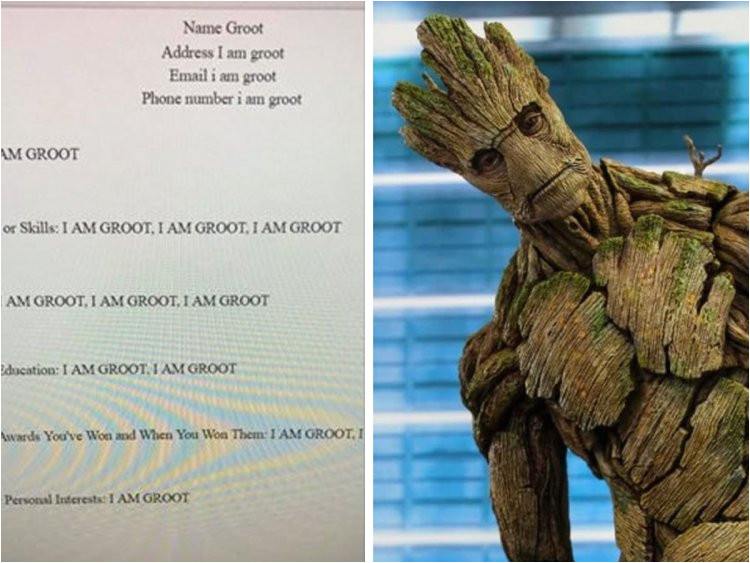 Student Resume Groot This Student Made A Resume for Groot and It S Honestly