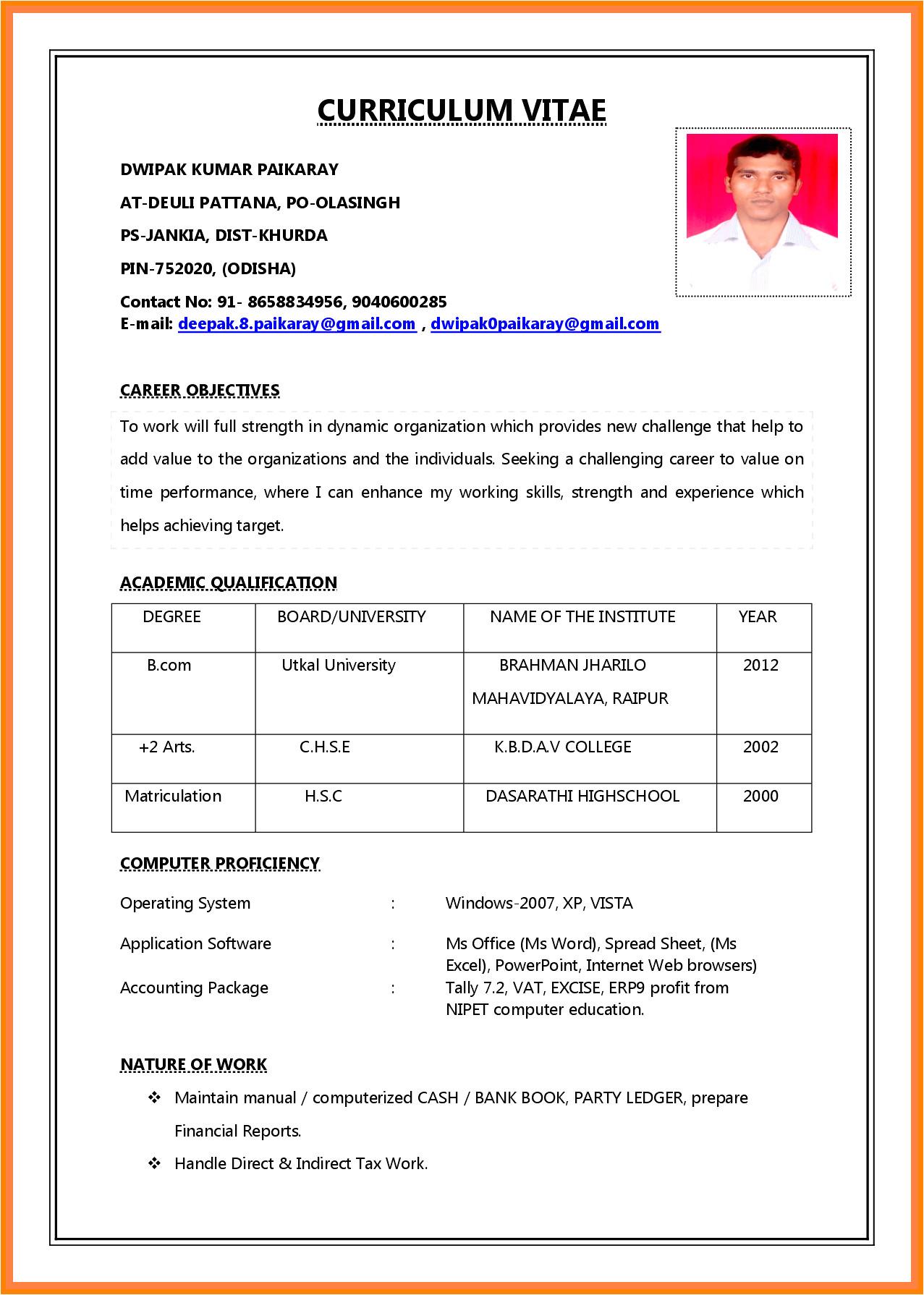 curriculum vitae application