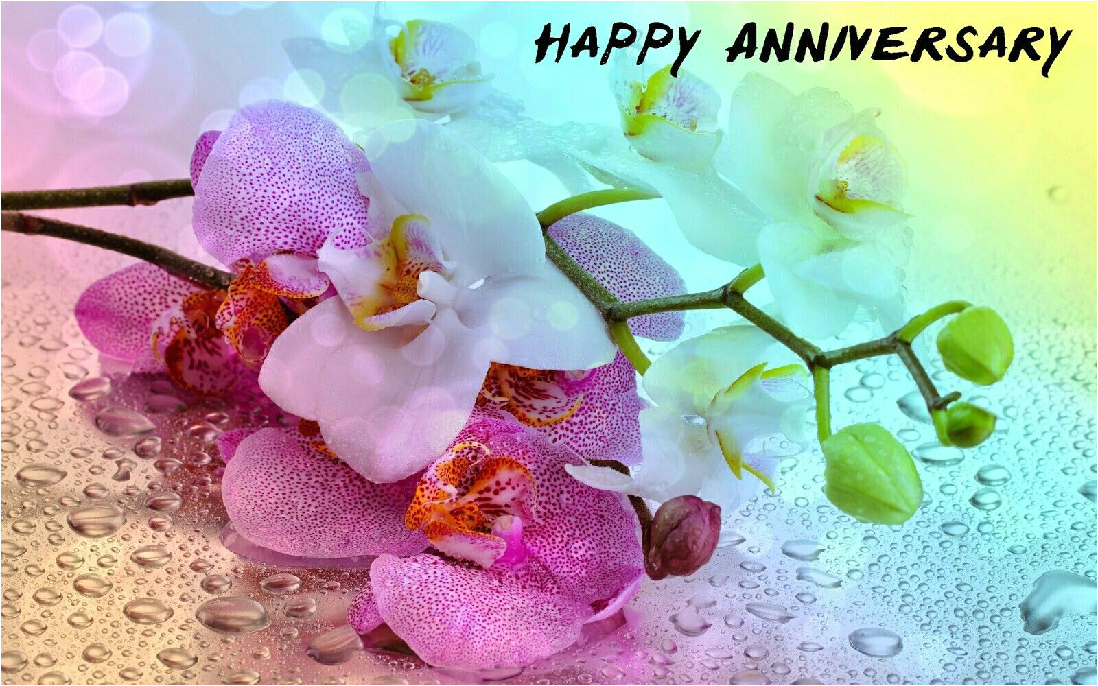 Anniversary Card Di and Jiju Idea by Romaana On Birthday Marriage Anniversary Quotes