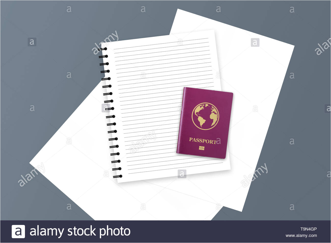 3d illustration of red realistic international passport id and document with copy space and blank notebook t9n4gp jpg