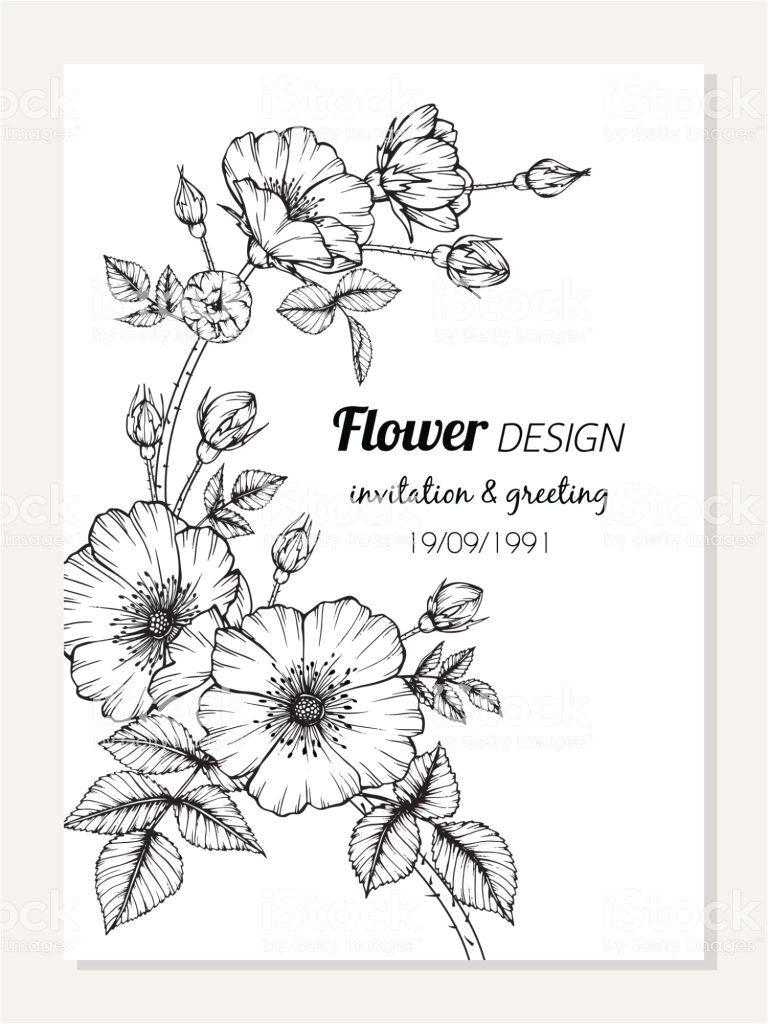 Card Flower Black and White Rose Flower Frame Drawing Illustration for Invitation and
