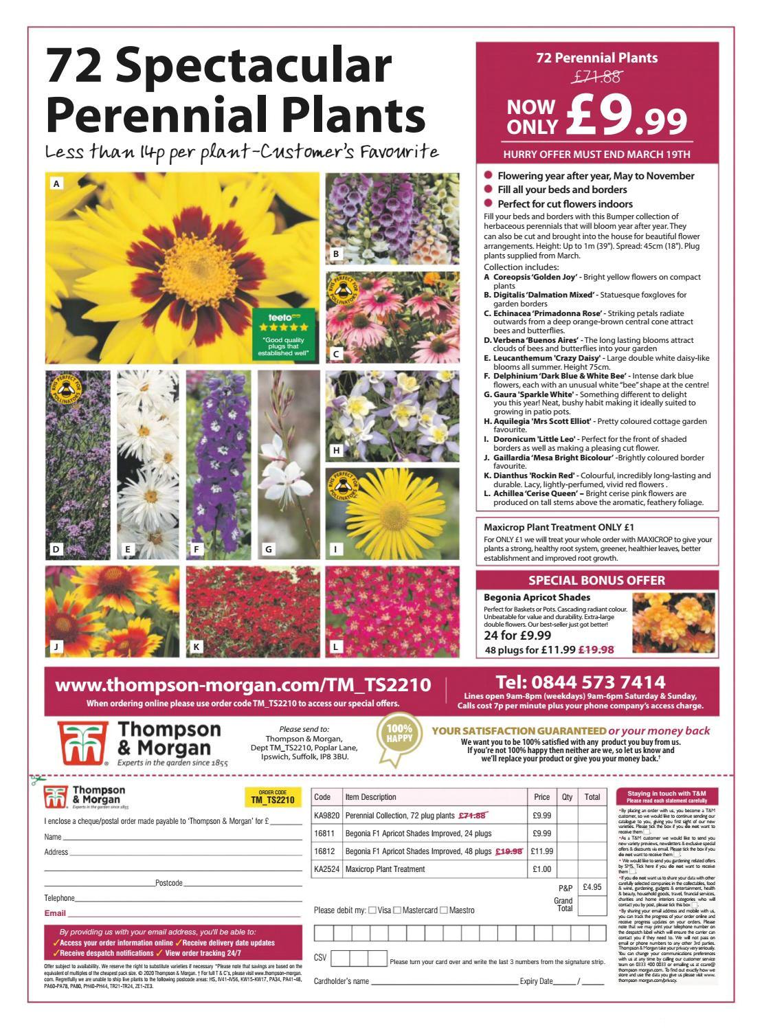 Card Your Yard Flower Mound Gsddewfgedq by Verano22 issuu