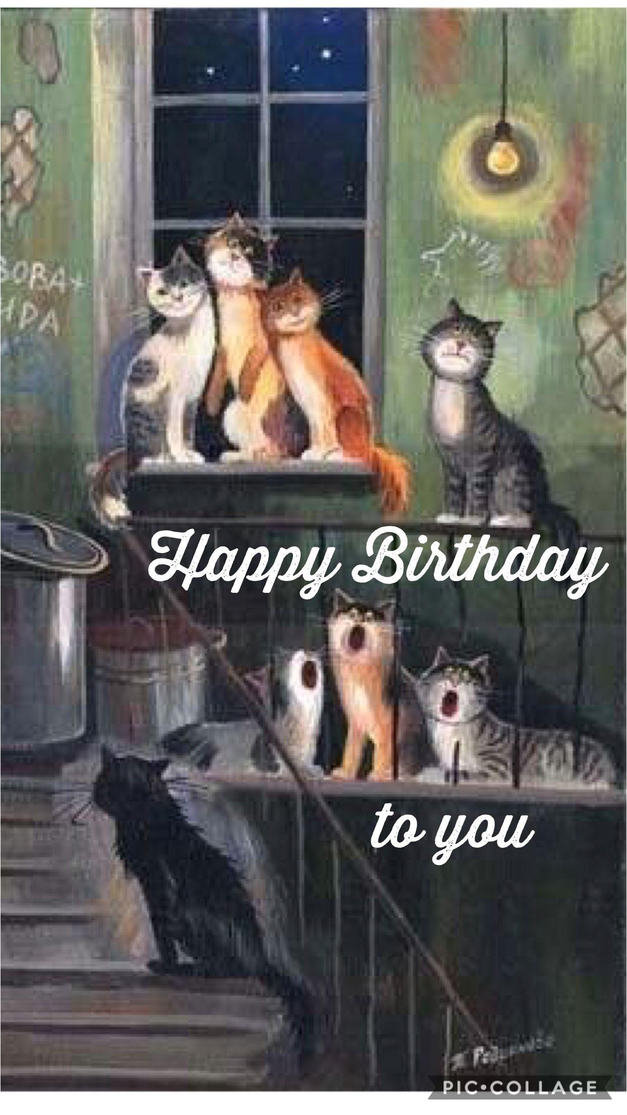 Cat Singing Happy Birthday Card Pin Von Wendy Darling Auf Birthday Happy Birthday Katze