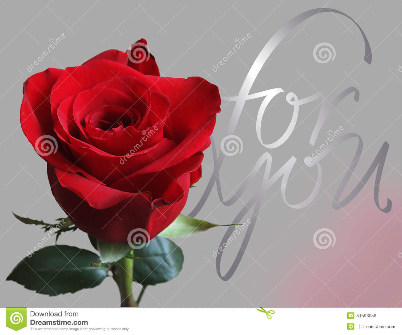 greeting card rose any kind events like valentine s mother s father s women s day name days birthdays 51598058 jpg