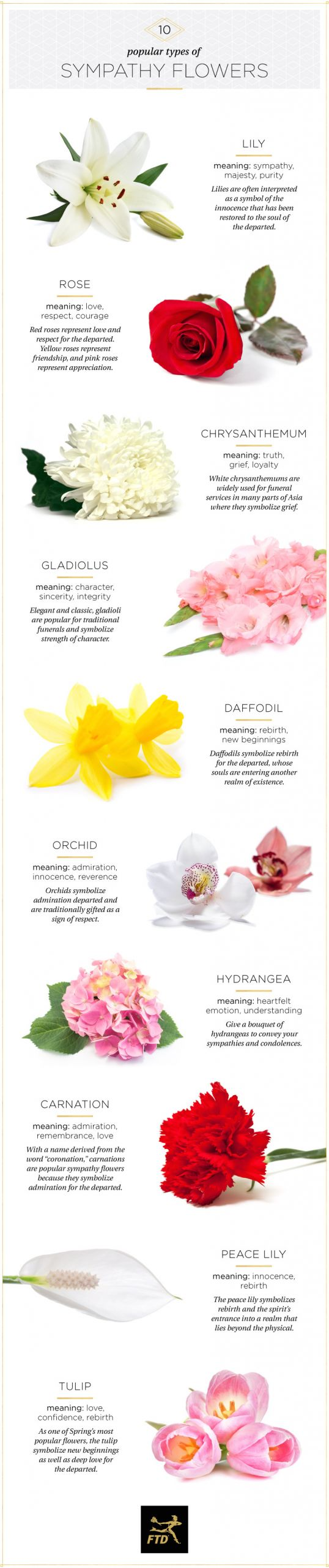 What Do You Say On A Sympathy Flower Card 13 Helpful Tips for Proper Funeral Etiquette Ftd Com
