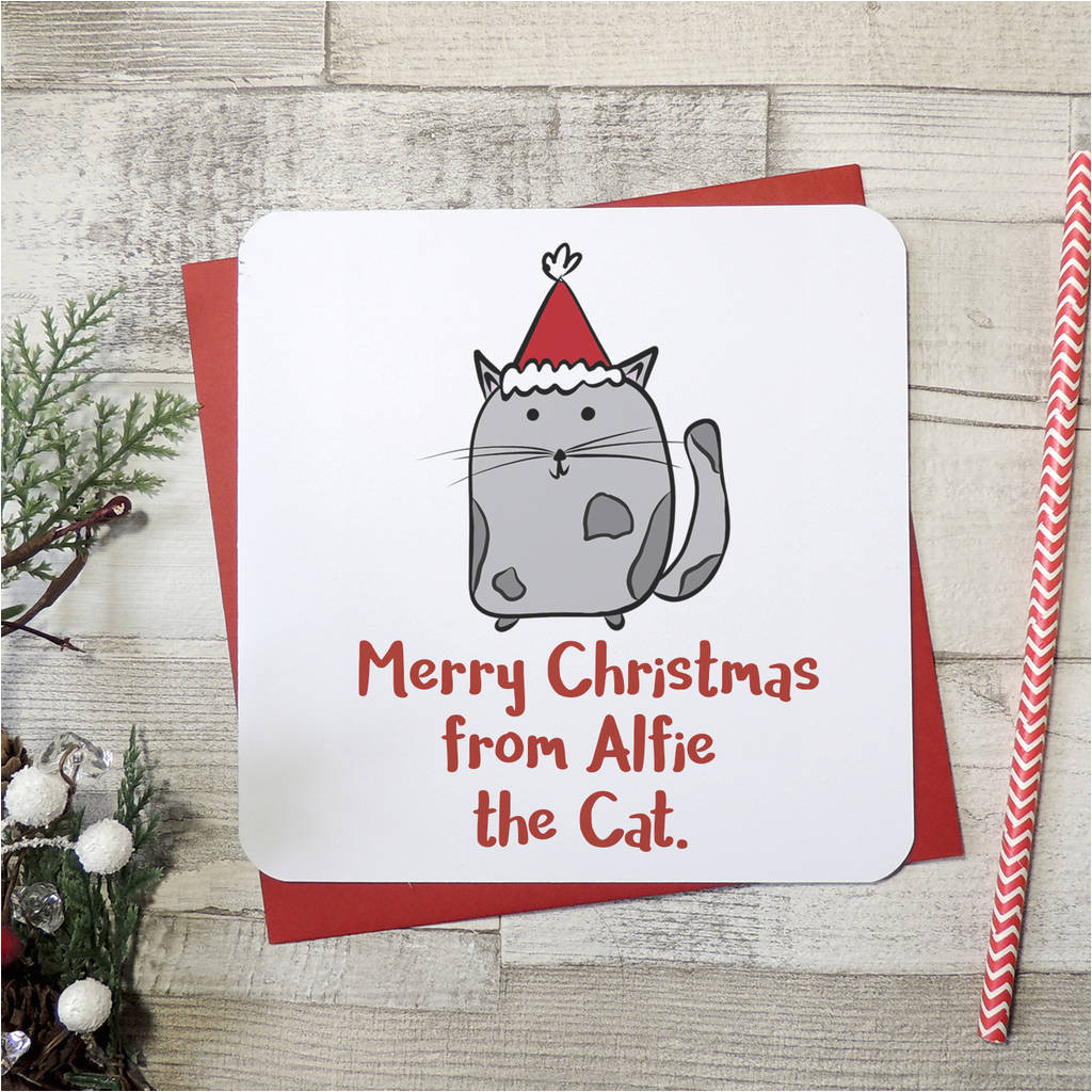 original merry christmas from the cat xmas card jpg