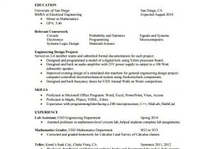 1 Page Resume Template Word One Page Resume Template Cyberuse