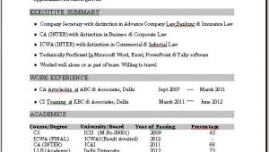 1 Year Experience Resume format Word Resume Example 1 Year Experience Example Experience