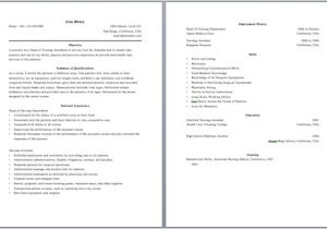 2 Page Resume Templates Free Download 2 Page Resume format Learnhowtoloseweight Net