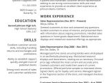 2017 Resume Samples Job Resume Template 2017 Resume Builder