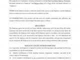 3 Month Employment Contract Template Sample Employment Contract
