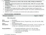 5 Years Experience software Engineer Resume Resume format for 6 Months Experienced software Engineer