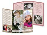 8.5×11 Tri Fold Brochure Template Tri Fold Brochure 8 5×11 Raspberry Cream ashedesign