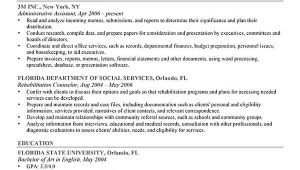 A Professional Resume Objective How to Write A Career Objective 15 Resume Objective