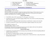 Account Executive Resume format Word Sample Resume for An Advertising Account Executive