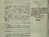 Adalat Xl Brand Name Card Klara Wohlgemuth Nee Seckel 1893 1945 Ihre Stimmen Leben