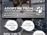 Adopt Me Flyer Template Animals Adopt Me Flyer Animals Flyers and Templates